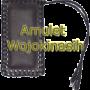 amuletkinasih