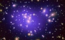 Bio Galaxy
